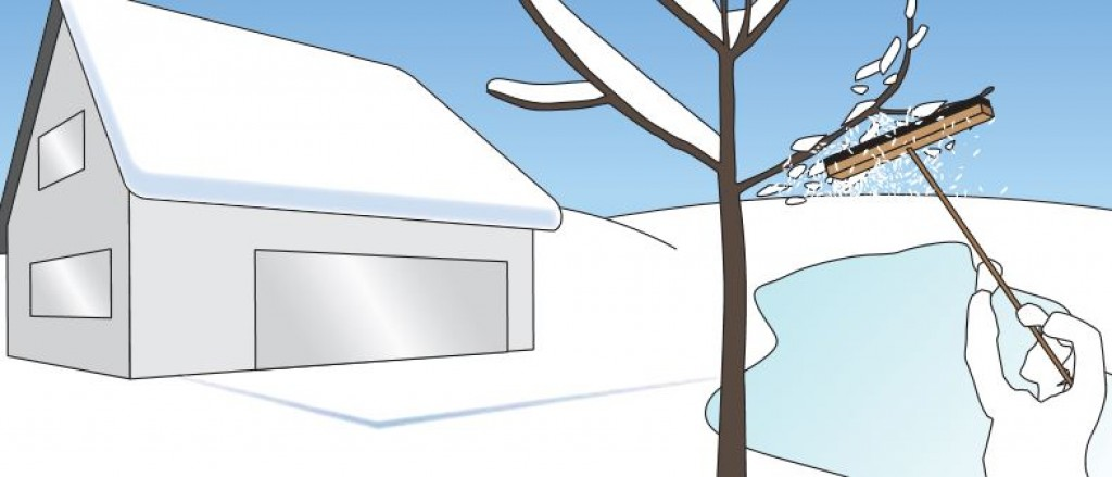 Gartenarbeiten Im Winter (dezember-februar) Gartenarbeit Dezember Was Tun